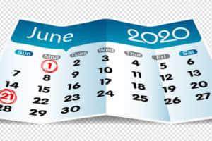 【2020年6月】梅雨時に狙える高配当銘柄を3つ紹介(ウェルネット/トラストホールディングス/TOW)